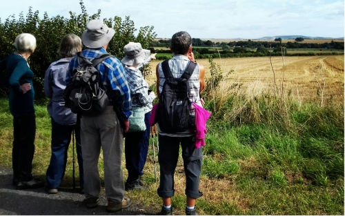 Friday Bus Pass Walkers viewing over the fields