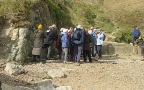 Geology Group - Lulworth Cove