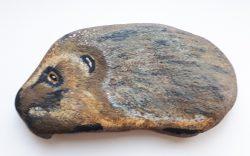 Hedgehog in Stone