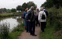 Wednesday Walkers on Towpath