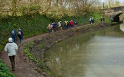 Wednesday Walkers January walk along the canal 2020
