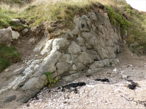 Seismic contortions in the Unio bed on West side of Lulworth Cove