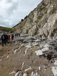 Upturned chalk cliffs to back of Lulworth Cove