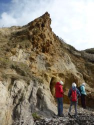 Coarse Grit of the Wealdon Beds on East side of Lulworth Cove