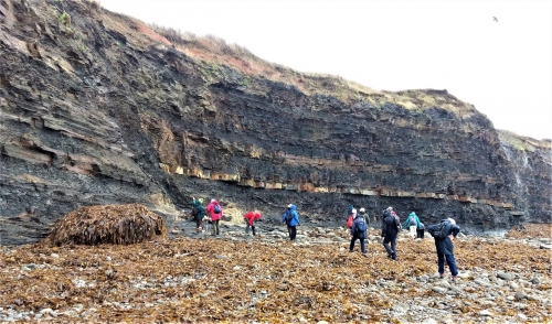 Extensional Fault in the cliffs Kimmeridge - WJ