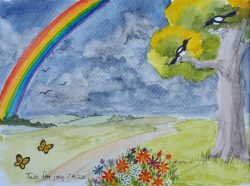 2 May 2020 Rainbows to say thank you to NHS staff by Wendy Johnson